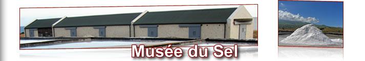 Site culture du Conseil Général